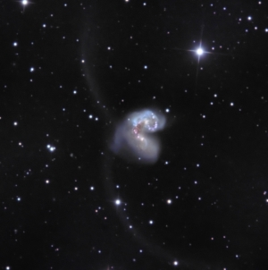NGC 4038 from BMV Observatories